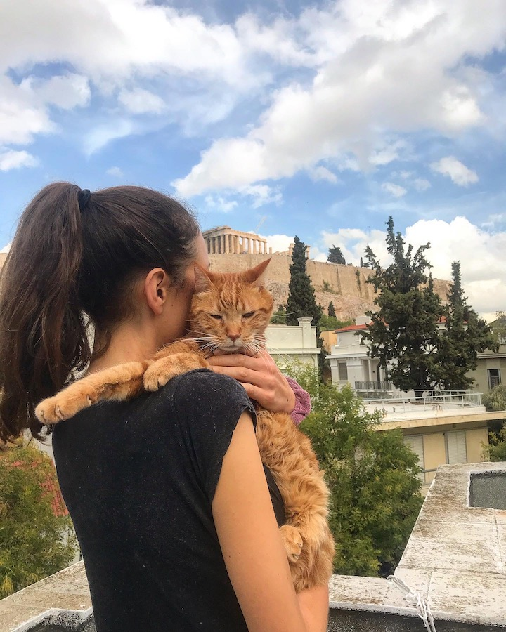 House Sitting in Athens Greece